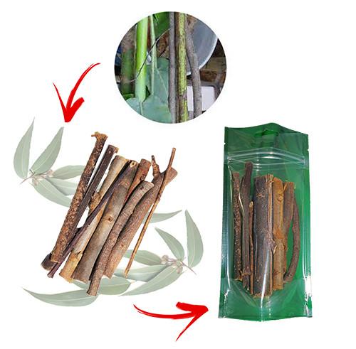 Eucalipto en rama Petauros del Azucar - Dieta Petauro del Azucar - Sugar Glider Food - Alimentacion Petauros
