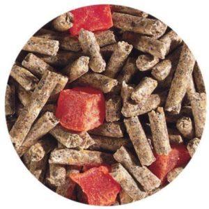 PELLET SUGAR GLIDER DIET PAPAYA EUCALYPTUS EXOTIC NUTRITION SUGAR GLIDER DIET FOOD